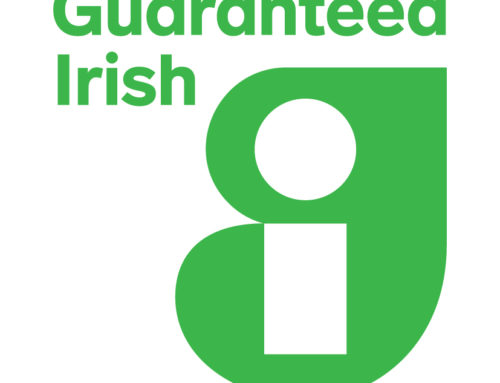 Members of Guaranteed Irish